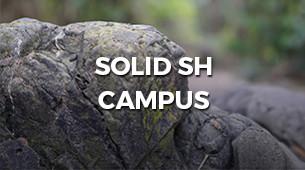 Solid SH Campus Thumb